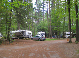 Shady Wooded Sites for RVs at Crown Point